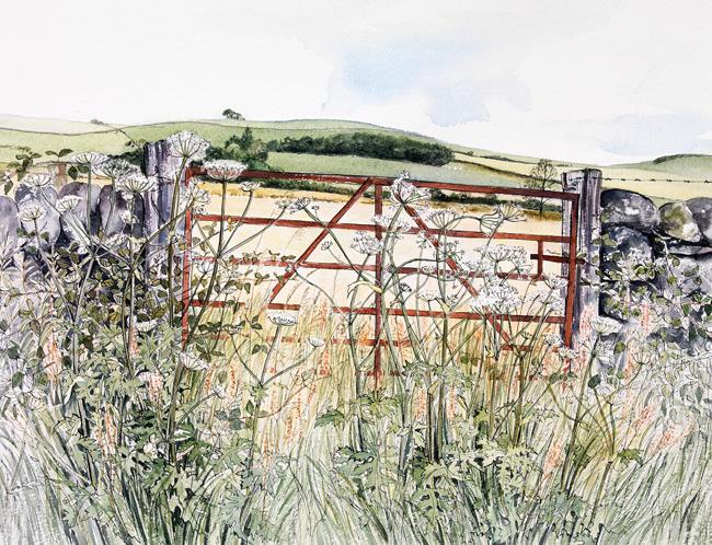 Field Gate, July