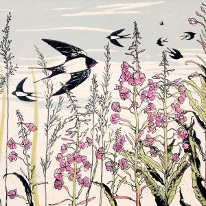 July Swallows