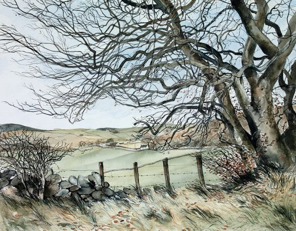 Over the Fields, Winter