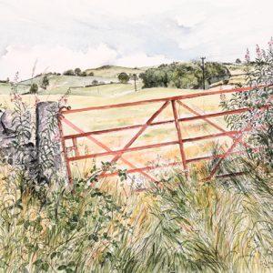 Field Gate, August