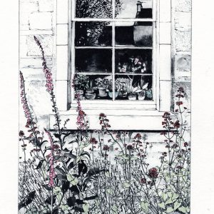 Foxgloves & Valerian